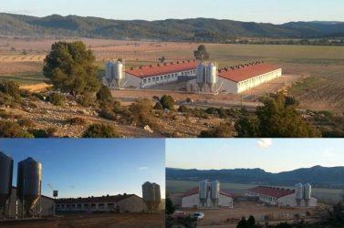 Finalizada la granja porcina en la Ginebrosa (Teruel)